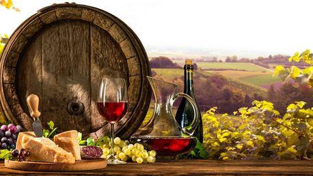 Jižní Morava s neomezenou konzumací vína, děti zdarma
