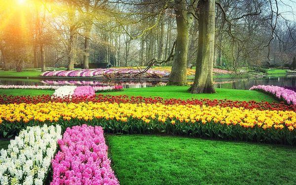 Květinový Keukenhof, ochutnávka sýrů a Amsterdam5