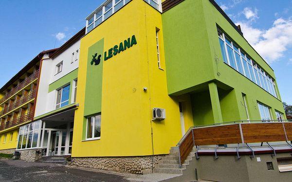 Hotel Lesana - Stará Lesná