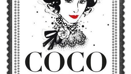 Coco Chanel: Ilustrovaný svět módní ikony - Megan Hess, bílá barva, stříbrná barva, papír