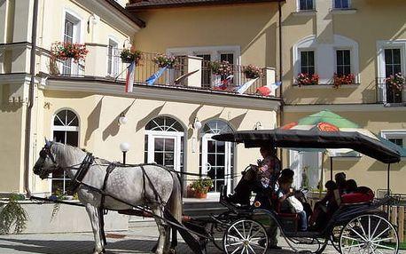 3denní pobyt s polopenzí ve 4* Hotelu Goethe Spa & wellness, bazén, procedury aj,