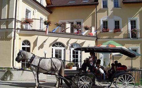 3 denní relaxační pobyt pro DVA v Mariánských Lázních v 4*hotelu Goethe včetně polopenze