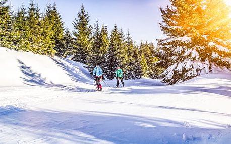 Bavorský les s wellness + dítě zdarma