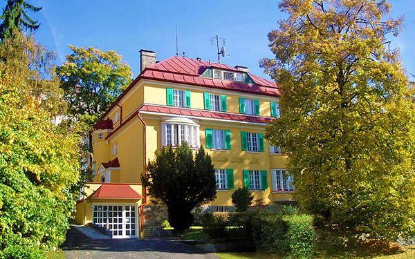 Hotel Villa Skalník