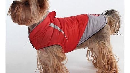 Sportovní obleček pro psy