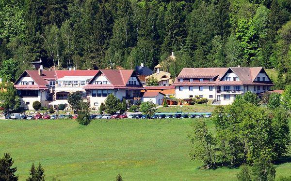 Hotel Podlesí