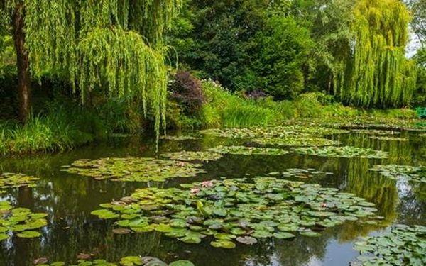 Paříž a Monetovy zahrady4