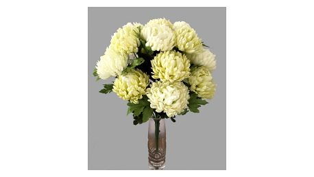 Umělá kytice Chryzantéma, krémová