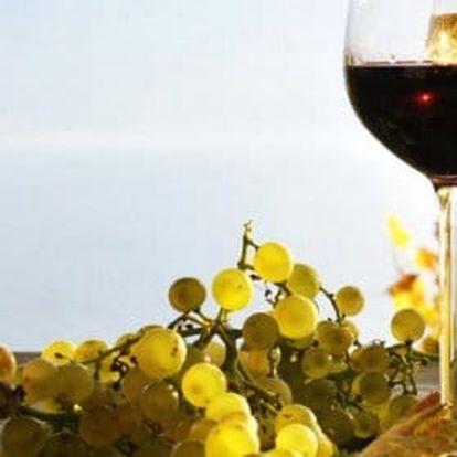 Znojmo a Penzion u Huberta s polopenzí a lahví vína pro dvojici