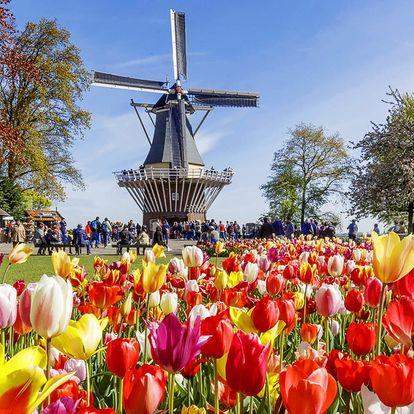 Holandsko na 1 noc: tulipány, sýry i Amsterdam