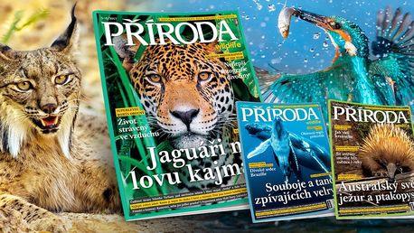 Časopis Příroda: celý ročník 2017 a něco navíc