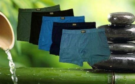 Pánské boxerky z bambusového vlákna 2 kusy v balení