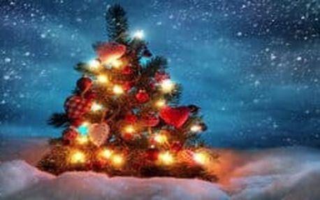 Krásne vianočné LED svetielka na váš stromček , množstvo druhov a farieb už od 3,90!