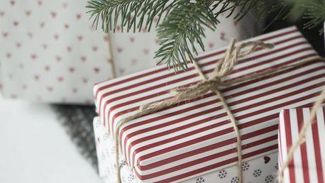 IB LAURSEN Dárkový balicí papír Red Stripes - 10 m, červená barva, bílá barva, papír
