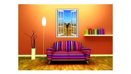 Živá dekorace na Okno - pštros