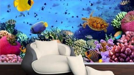 Fototapeta Rybky v akváriu 3