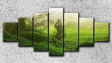 Zelená pláň 2