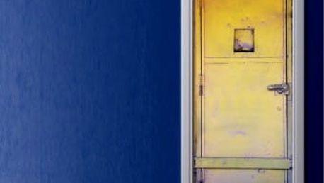 Živá dekorace na Dveře - plechové