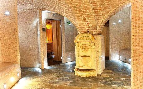 Hotel Zlatý Lev****, Objevování historie piva a 4* hotel s wellness v Žatci