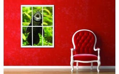 Živá dekorace na Okno - sumeček