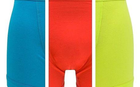 3PACK pánské boxerky Calvin Klein barevné L
