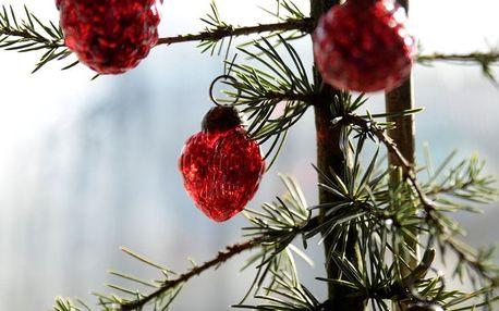 IB LAURSEN Vánoční mini ozdoby Red - 10ks, červená barva, sklo