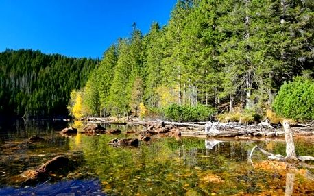 Pobyt na Šumavě pro dva: bazény a polopenze
