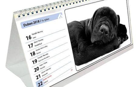 Originální kalendář z Vašich fotografií. Stolní, nástěnný? Čtrnáctidenní nebo roční?