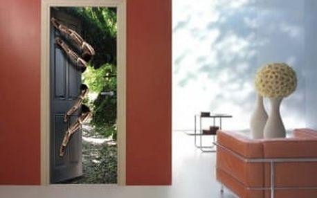 Živá dekorace na Dveře - pavouk