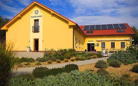 3 až 5denní wellness pobyt pro 2 s degustací vín ve Slunečném penzionu na Moravě