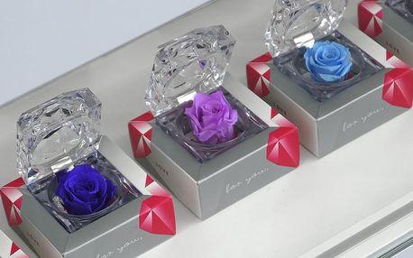 Stále kvetoucí růže v dárkovém balení