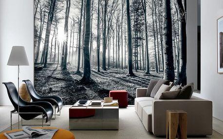 1Wall 1Wall Vliesová fototapeta Černobílý les 366x253 cm