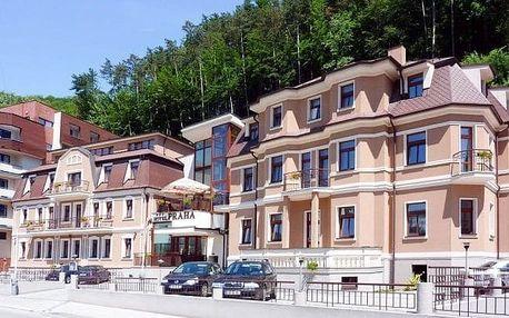 Trenčianské Teplice: polopenze, wellness