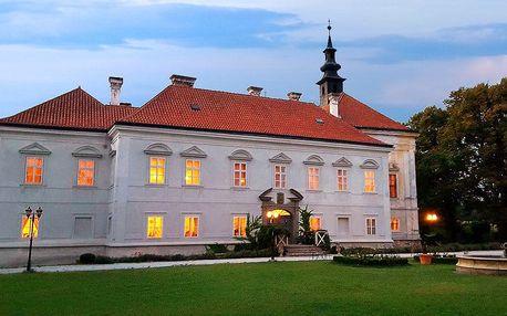 Svatomartinské oslavy na zámku Radíč s večeří