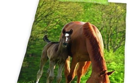 Herding Herding povlečení Kůň 140x200, 70x90