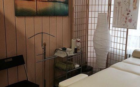 Breussova masáž pro 1 osobu v délce 45 minut na Praze 1
