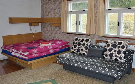 Šumava na 3-7 dní pro 2-4 osoby včetně polopenze v apartmánech Penzionu Rankl-Sepp