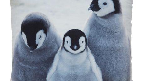 Polštář ozdobný pinguin, 45/45 cm