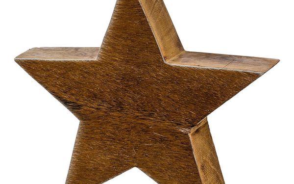 Hvězda dekorační alm, 14 cm