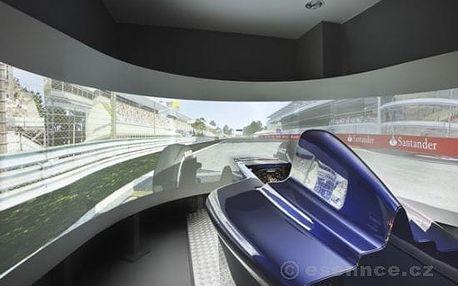 Závody Formule 1 - dva simulátory (30 min.)