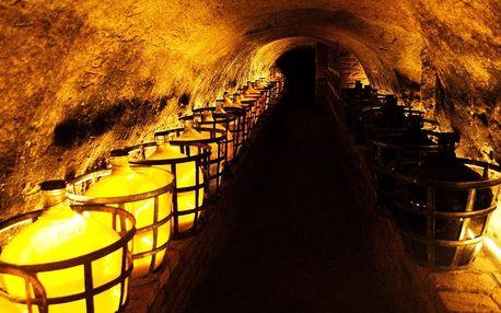Last minute vinařský pobyt u Znojma na 2 dny pro 2 osoby