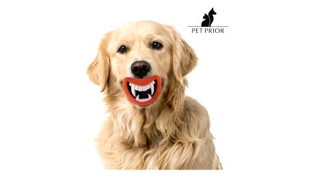 Gumová Hračka se Zvukem pro Psy Funny Pet Prior