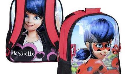 Oboustranný školní batoh Lady Bug 822