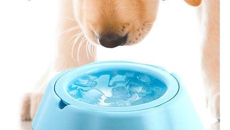 Miska na Vodu pro Domácí Mazlíčky My Pet Frosty Bowl