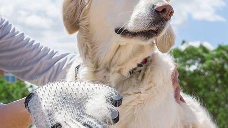 Vyčesávací Rukavice pro Psy My Pet Petter