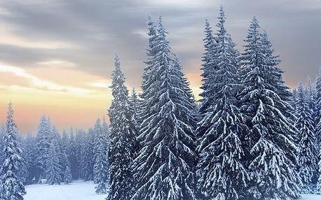 Orlické hory - ubytování pro 1 osobu na 8 dní s polopenzí v nádherné přírodě za neuvěřitelnou cenu.