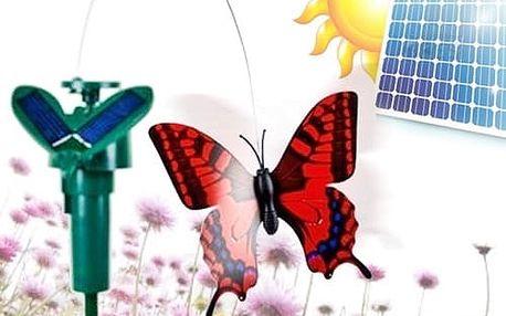 Poletující motýl na solární energii