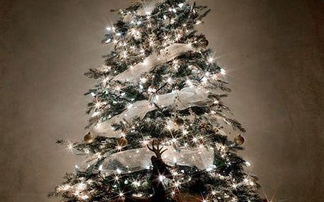 Bílé Vánoční Osvětlení 192 LED