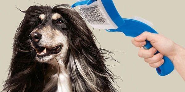 My Pet Bristles Kartáč pro Domácí Mazlíčky
