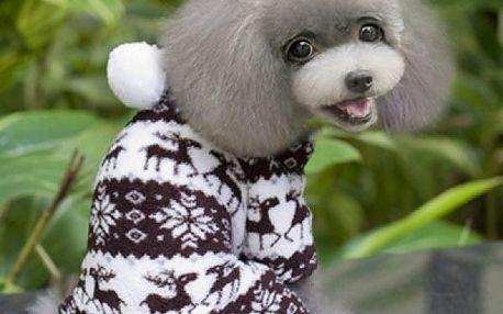 Zimní obleček pro pejska - 4 varianty